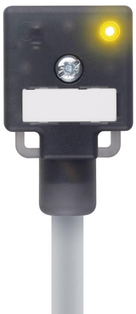 Propojovací ventil Escha VA22-24.3-5/P01 (8047821), IP67 / IP69K, 5 m, černý
