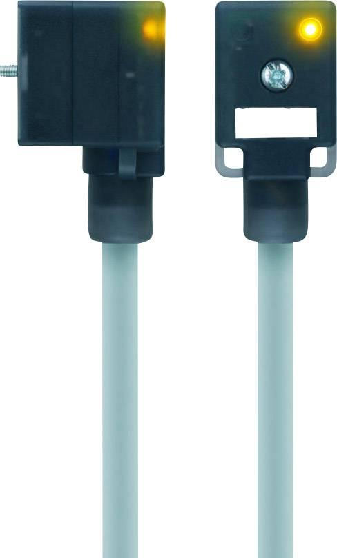 Propojovací ventil Escha VBI21-24.3-5/P01 (8047830), IP67 / IP69K, 5 m, černý