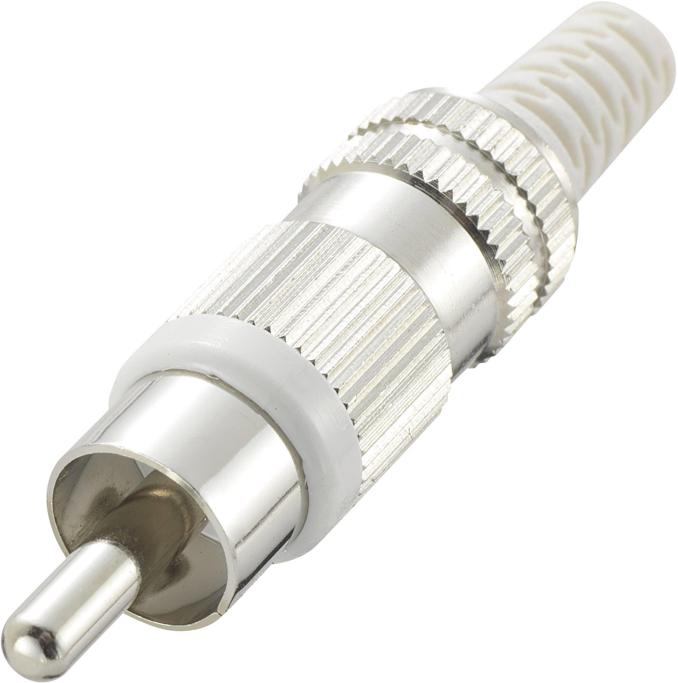 Cinch konektor Conrad Components zástrčka, rovná, pólů 2, bílá, poniklovaný, 1 ks