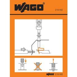 Manipulační nálepka, WAGO 210-182, 100 ks