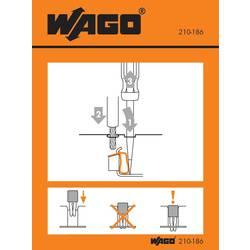 Manipulační nálepka, WAGO 210-186, 100 ks