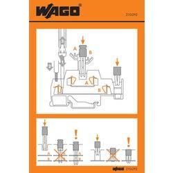 Manipulační nálepka, WAGO 210-292, 100 ks