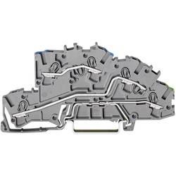 Poschodová inštalačné svorka WAGO 2003-7646, osadenie: N, L, PE, pružinová svorka, 5.20 mm, sivá, 1 ks
