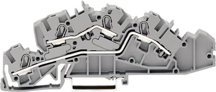 Inštalačná svorka WAGO 2005-7642, osadenie: L, L, pružinová svorka, 6.20 mm, sivá, 1 ks