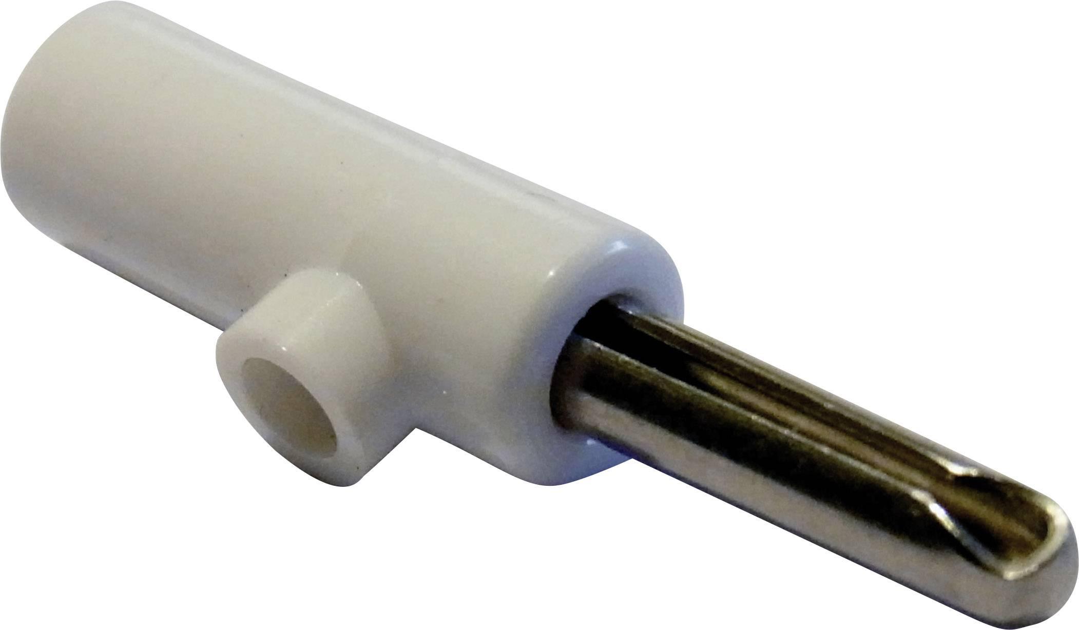 Banánový konektor Schnepp – zástrčka, rovná, Ø hrotu: 4 mm, biela, 1 ks