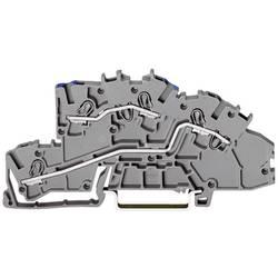 Inštalačná svorka WAGO 2003-7649, osadenie: N, L, pružinová svorka, 5.20 mm, sivá, 1 ks