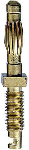 Nožová lišta Stäubli SA401 – zástrčka, rovná, Ø hrotu: 4 mm, mosadz, 1 ks