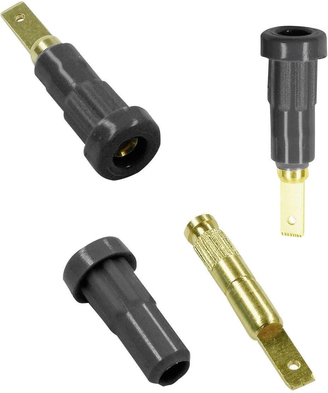 Laboratórna zásuvka Stäubli EB2 – zásuvka, vstavateľná vertikálna, Ø hrotu: 2 mm, čierna, 1 ks