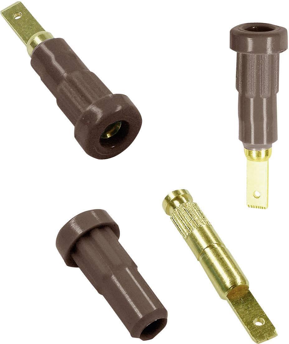 Laboratórna zásuvka Stäubli EB2 – zásuvka, vstavateľná vertikálna, Ø hrotu: 2 mm, hnedá, 1 ks
