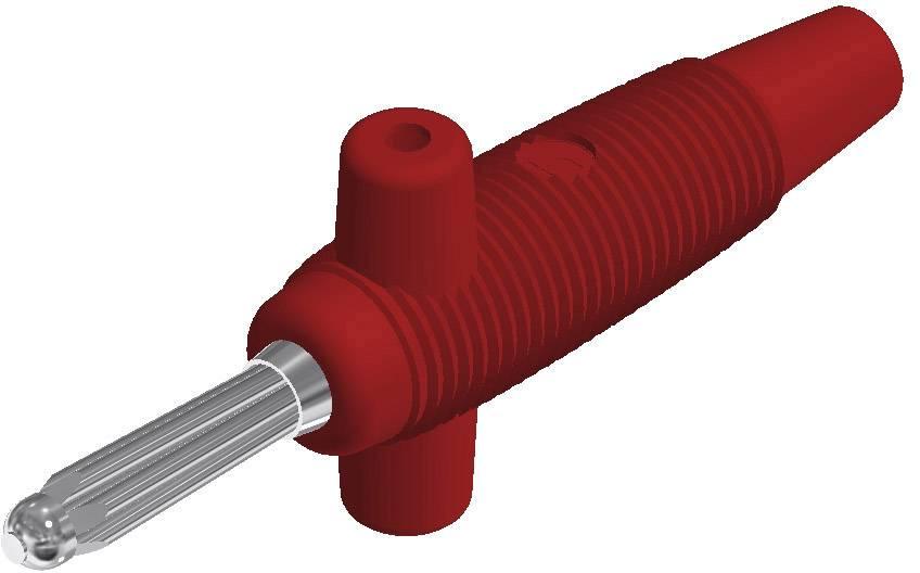 Banánový konektor SKS Hirschmann Buela 300 K – zástrčka, rovná, Ø hrotu: 4 mm, červená, 1 ks