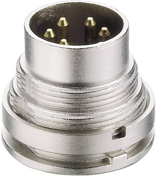 DIN kruhový konektor Lumberg SGV 50/6, zástrčka, vestavná rovná, pólů 5, stříbrná, pozlacený, 1 ks