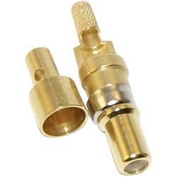 Koaxiální kolíkový kontakt Conec 131J20029X, 174 U 188 A/U 316 U, pozlacený