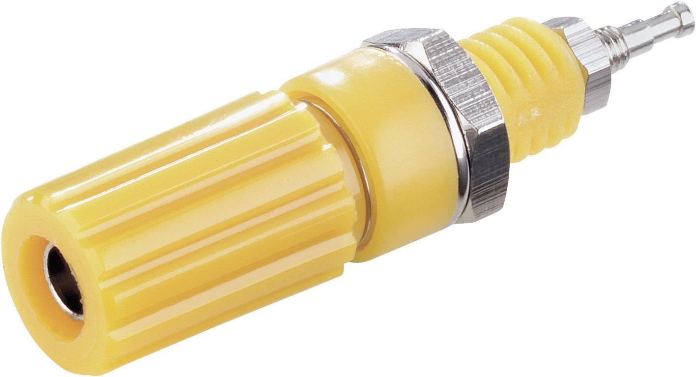 Pólová svorka SCI, (Ø x d) 6,5 x 11,5 mm, žlutá
