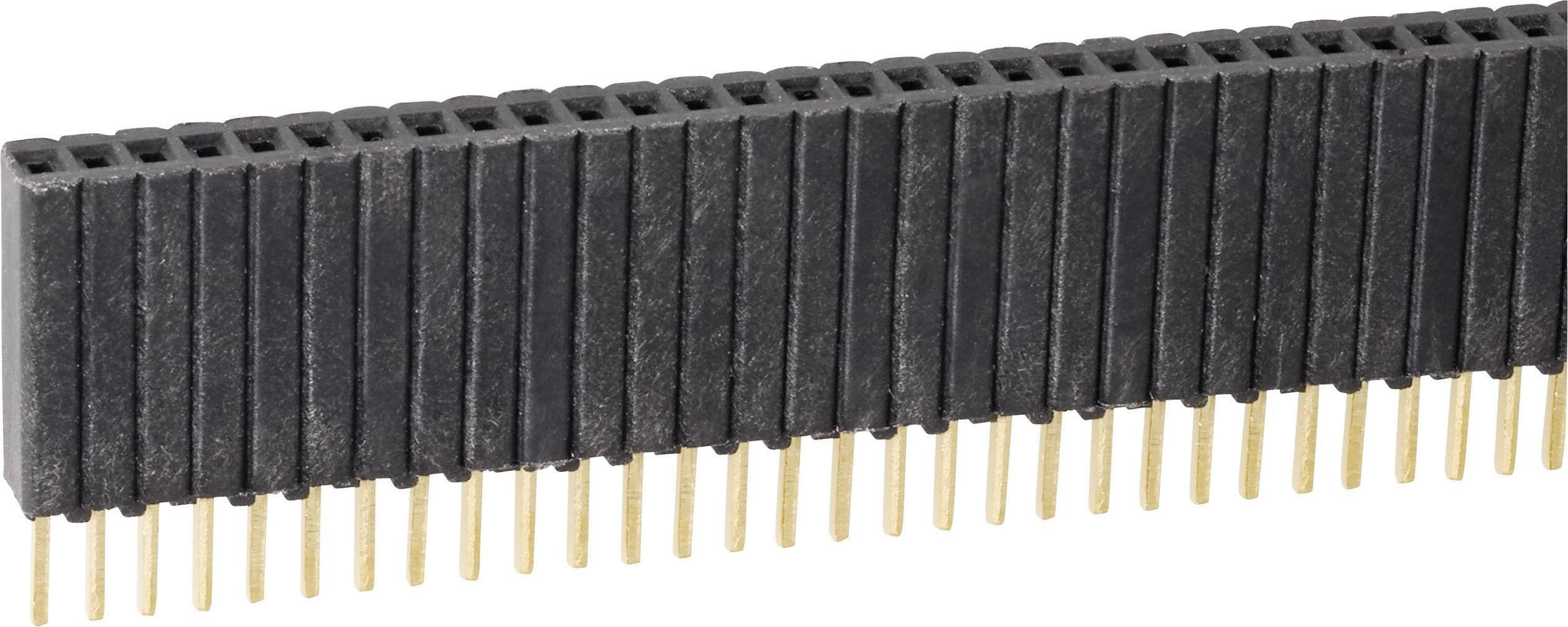 Zásuvková lišta Fischer Elektronik BLM KG 1/ 36/G, řádky 1, kontakty na řádek 36, 1 ks