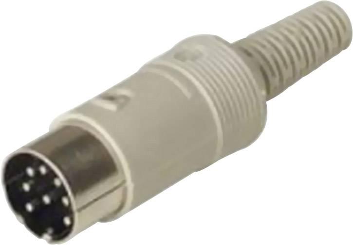 DIN kruhový konektor zástrčka, rovná Hirschmann MAS 80 S, pinov 8, sivá, 1 ks