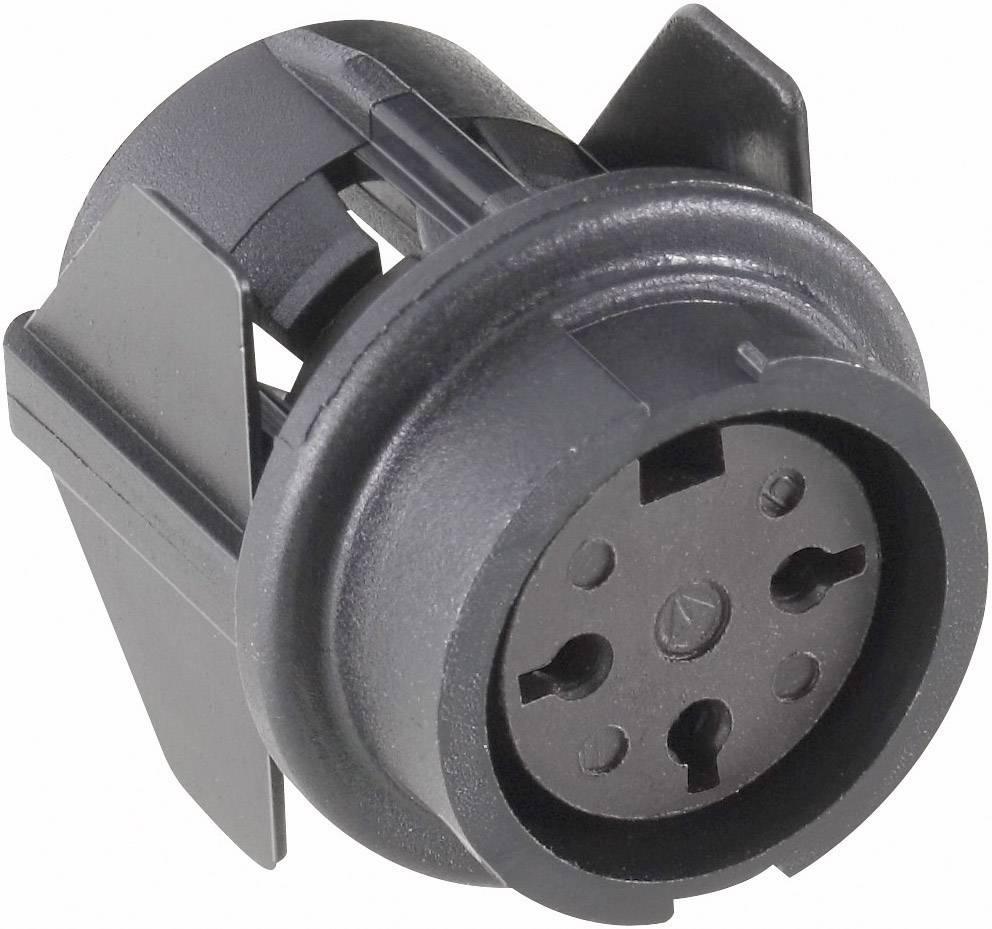 Přístrojová zásuvka 3 pólová,, 250 V, 5 A