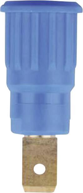 Bezpečnostná laboratórna zásuvka Stäubli SEB4-F6,3 – zásuvka, vstavateľná vertikálna, Ø hrotu: 4 mm, modrá, 1 ks