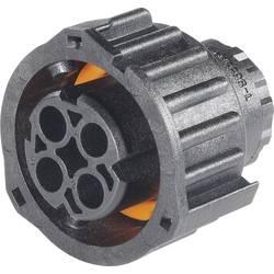 Kruhový konektor podľa DIN 72585, 3 až 7 pólov, teleso kolíkov a zásuviek guľatý faston TE Connectivity 1-968968-3 IP69/IP69K, pólů 2, 1 ks