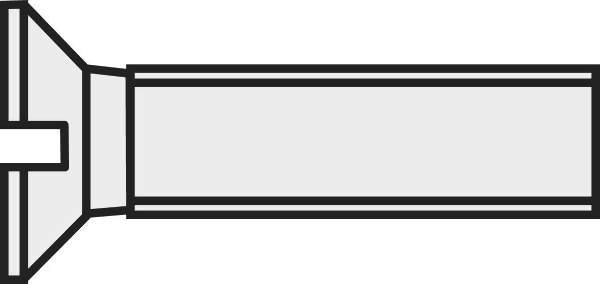 Šrouby se zápustnou hlavou s drážkou, polyamid, DIN 963, M4 x 25, 10 ks