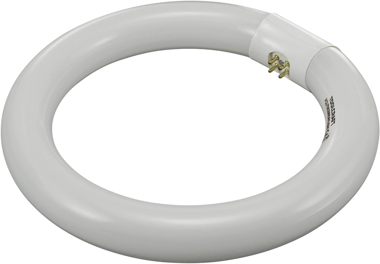 Kruhová trubica s luminoforom, 22 W