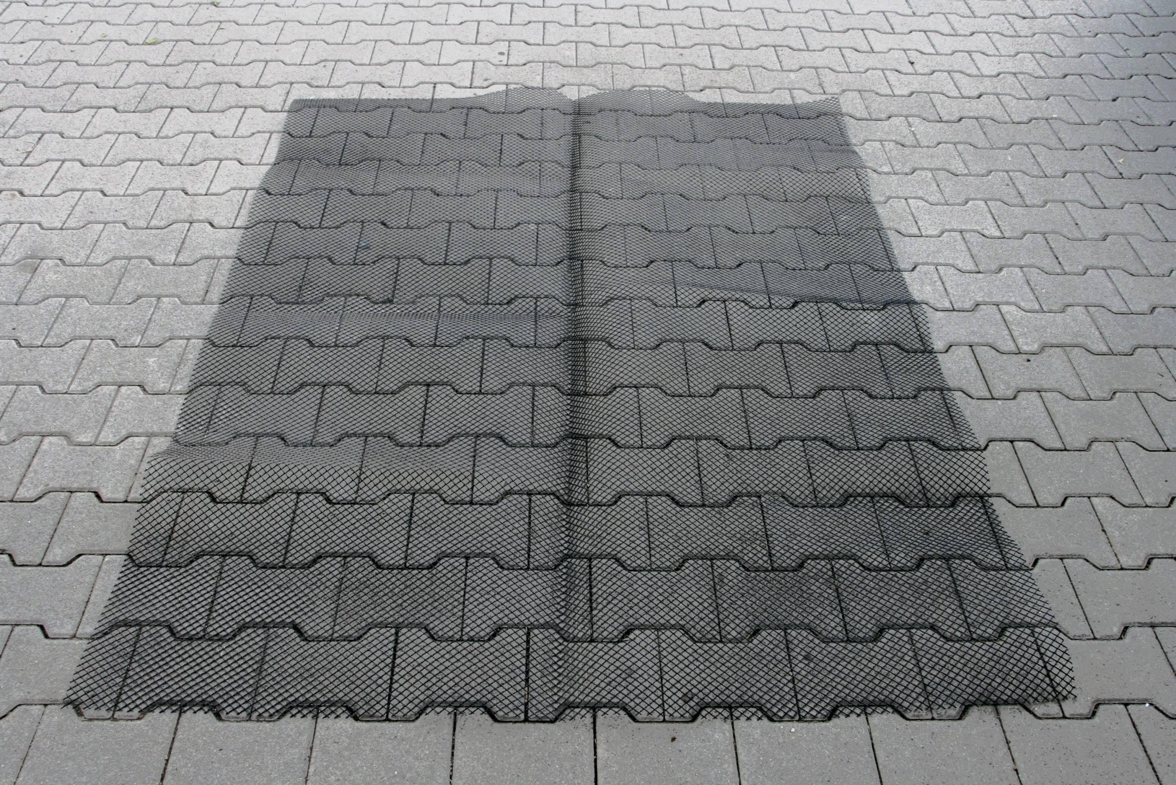 Koberec proti kunám 10108, 190 x 150 cm