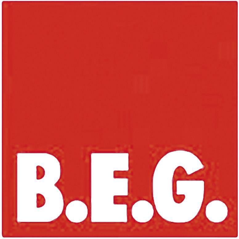 B.E.G. Brück