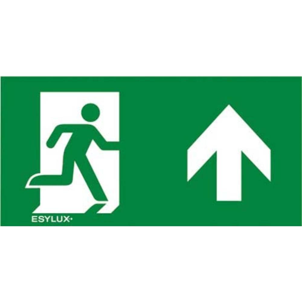 ESYLUX EN10077197 piktogram nouzový východ před vámi, nouzový východ výše