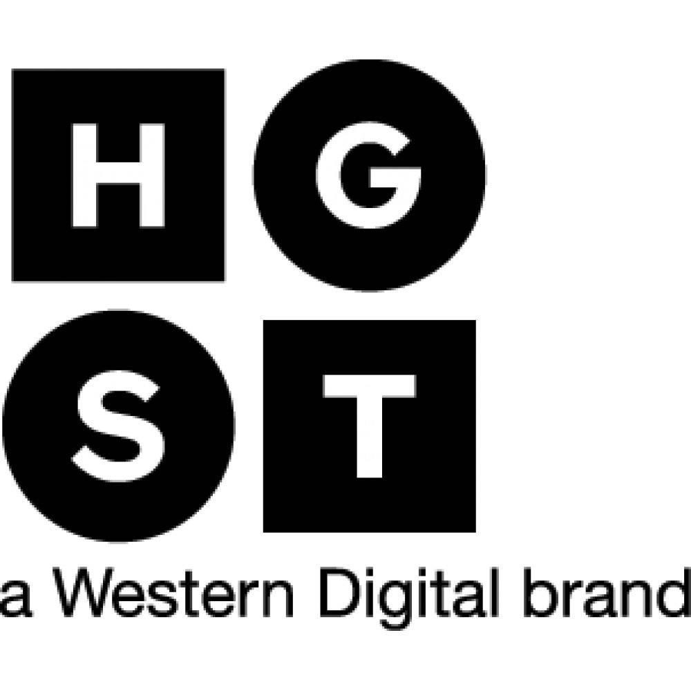 "HGST Ultrastar SS200 400 GB Interní SAS SSD 6.35 cm (2.5"") SAS 12Gb/s Bulk 0TS1376"