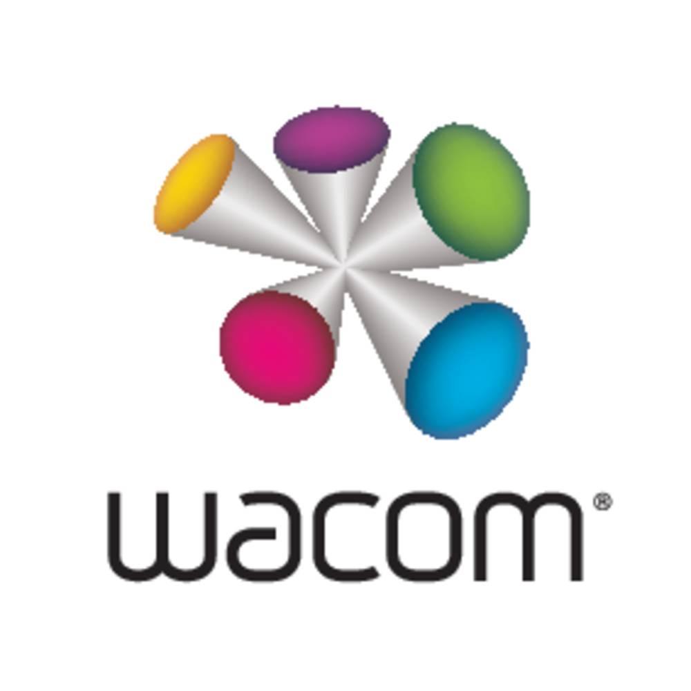 Wacom DTK-2451 kabelový kreativní grafický tablet černá