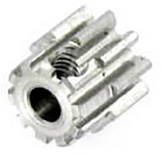 Motorritzel Reely Modul-Typ: 0.8 Bohrungs-Ø: 3.2 mm Anzahl Zähne: 10