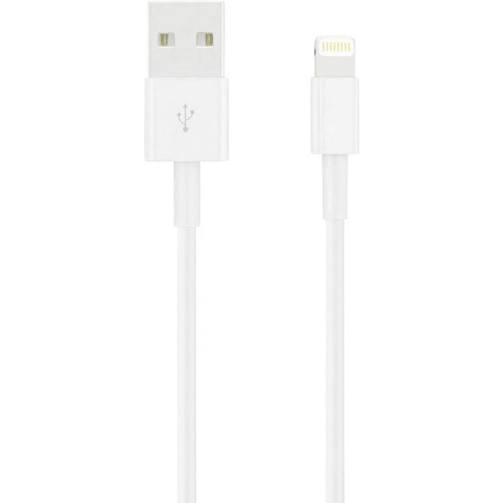 Apple iPad-iPhone-iPod Datakabel-Laadkabel [1x Apple dock-stekker Lightning 1x USB 2.0 stekker A]