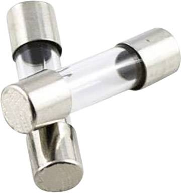 10x träge USA Feinsicherungen Sicherung 10,0A 6,3 x 32 mm 6,3x32 Glassicherung