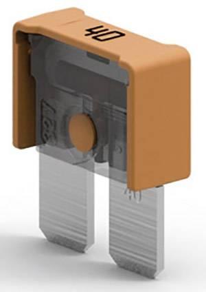 Kfz Sicherungen ; Flachstecksicherung Maxi ; Sicherung