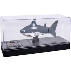 RC model motorového člunu pro začátečníky Carson RC Sport Sharky, 110 mm, 100% RtR