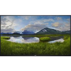 "LCD monitor Dell C5519Q, 139.7 cm (55 ""),3840 x 2160 pix 8 ms audio, stereo (jack 3,5 mm), VGA, DisplayPort, HDMI™, USB, RS232"