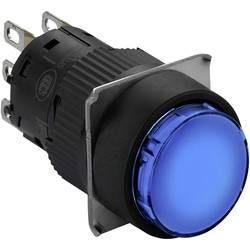 Tlačidlo Schneider Electric XB6EAA61P, 250 V, 3 A, čierna, modrá, 5 ks