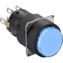 Svetelné tlačidlo Schneider Electric XB6EAW6B2P, 250 V, 3 A, čierna, modrá, 5 ks