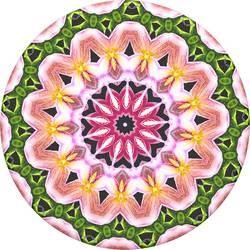 Stojan na mobil POPSOCKETS Orchid Mandala N/A, viacfarebná