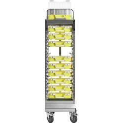 Vozík pre transport kufríkov s dielmi raaco 144902, Priehradiek: 10, 415 x 1580 x 425, strieborná