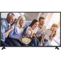 Dyon Live 43 Pro LED TV 108 cm 42.5 palca en.trieda A + (A ++ - E) DVB-T2, DVB-C, DVB-S, Full HD, CI+ čierna