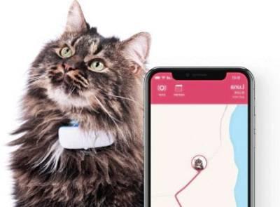 Leichter und kleiner GPS-Tracker für Haustiere.
