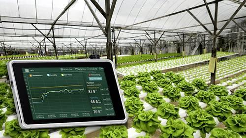 Feuchtigkeitsmessung in der Landwirtschaft