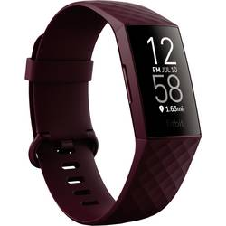 Fitness hodinky FitBit Charge4