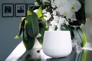 Aroma-Lufterfrischer