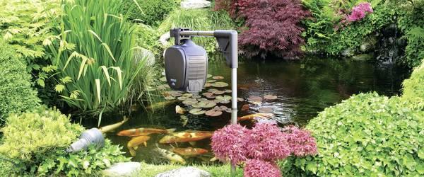 Fischfutterautomat für den Gartenteich