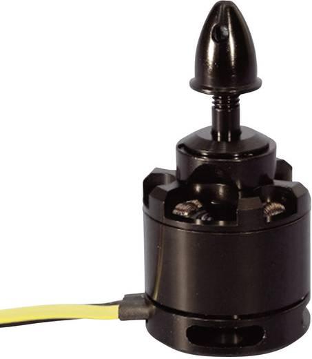 Black Pearl RC Multicopter-Motor MC2814 KV700 Brushless Motor
