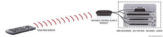 Marmitek Invisible Control Black 4 IR-Verlängerung Schwarz