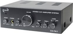 Amplificateur stéréo 25 W Dynavox CS-PA1 noir