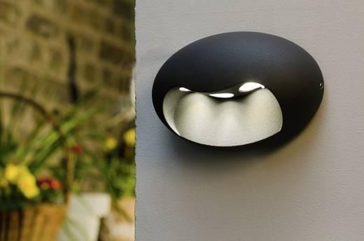 LED-Außenwandleuchte 5 W Neutral-Weiß ECO-Light LED-Design Leuchte Eyes 1860 GR Anthrazit