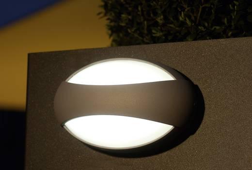 LED-Außenwandleuchte 3 W Neutral-Weiß ECO-Light LED-Design Leuchte Eyes 1861 GR Anthrazit